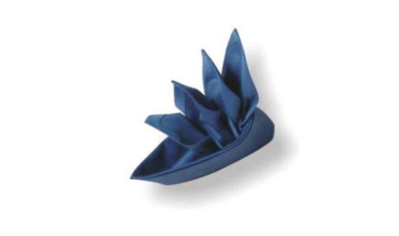 origami napkins bird of paradise